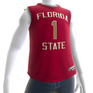 Florida State Basketball Jersey