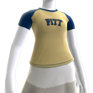 Pittsburgh Artículo del Avatar