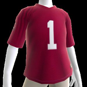 South Carolina Football Jersey