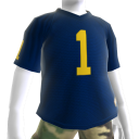 Michigan Football Jersey