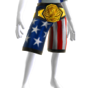 Championship Belt Gold - USA