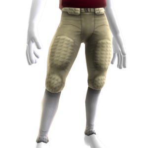 Florida State Game Pants