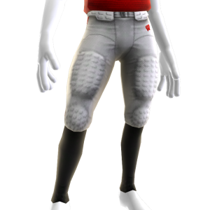 Wisconsin Game Pants