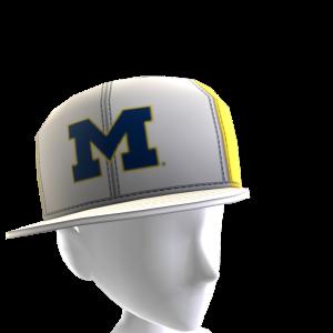 Michigan Tilted Panel Cap