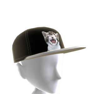 Epic Cat Hat 4
