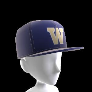 Washington FlexFit Cap