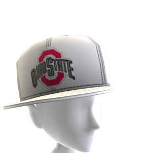 Ohio State Tilted Panel Cap