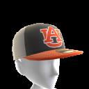 2017 Auburn Cap