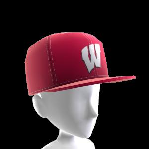 Wisconsin FlexFit Cap