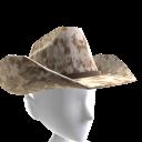 Cowboy Hat - Desert