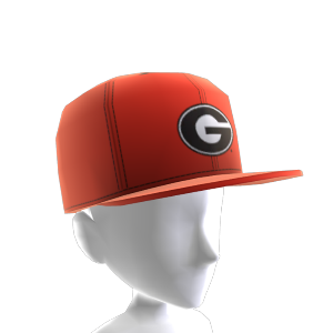 Georgia FlexFit Cap