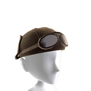 Flight Hat and Goggles