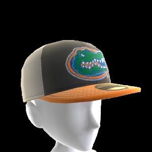 2017 Florida Cap
