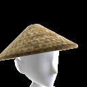 Raiden Hat