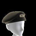 Boina Panzer