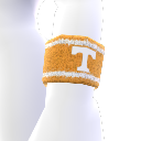 Tennessee Wristband