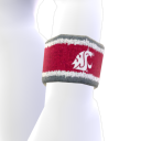 Washington State Avatar Item
