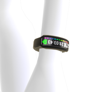 Fitness Band - Black