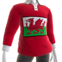 Wales Rugby Jersey