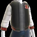 Cincinnati Varsity Jacket