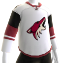 Coyotes 2016 Away Jersey