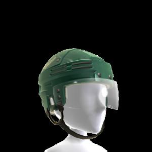 Minnesota Wild Alternate Helmet