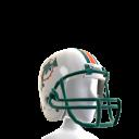 Miami Helmet