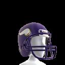 Minnesota Helmet
