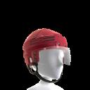 Detroit Red Wings Helmet