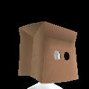 A Paper Bag