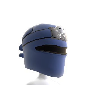 Ninja Pirate Hood