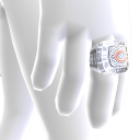 Chicago Championship Ring