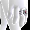 Heat Championship Ring
