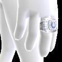 Indianapolis Championship Ring