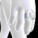 Pittsburgh Championship Ring