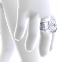 New England Championship Ring