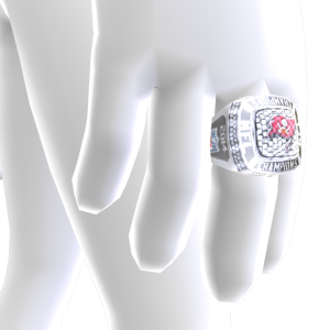 Tampa Bay Championship Ring