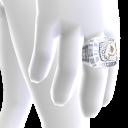 Washington Championship Ring
