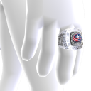 Blue Jackets Championship Ring