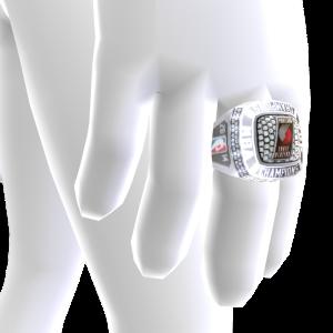 Trail Blazers Championship Ring