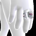 Hawks Championship Ring