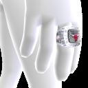 Bulls Championship Ring