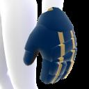Notre Dame Hockey Gloves
