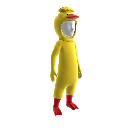 Costume de canard