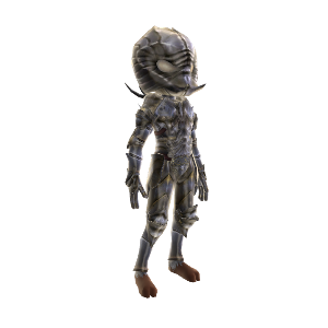 Silver Warrior Outfit