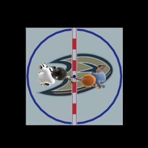 Ducks Face-Off