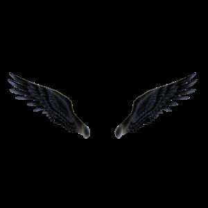 Animación de alas de Devil Jin