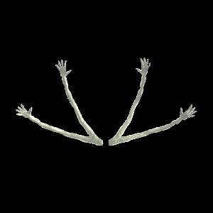 Wodan's Arms