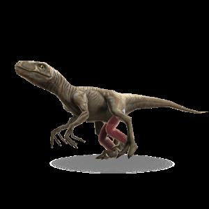 Raptor Suit