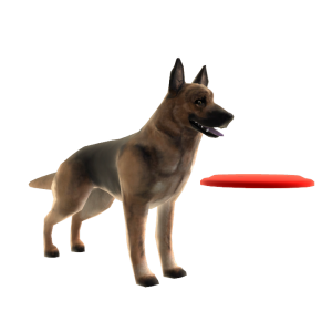 German Sheperd - Frisbee